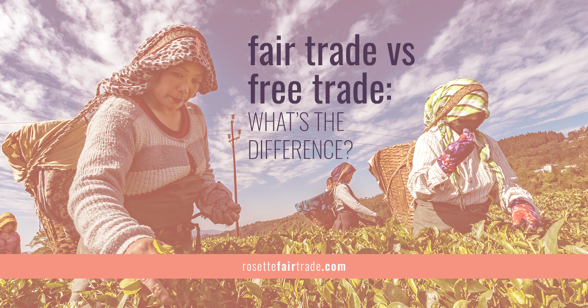 Fair trade vs free trade differences, comparison and infographic on Rosette Fair Trade