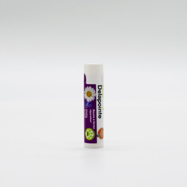 Chamomile-violet lip balm by Delapointe on Rosette Fair Trade online store