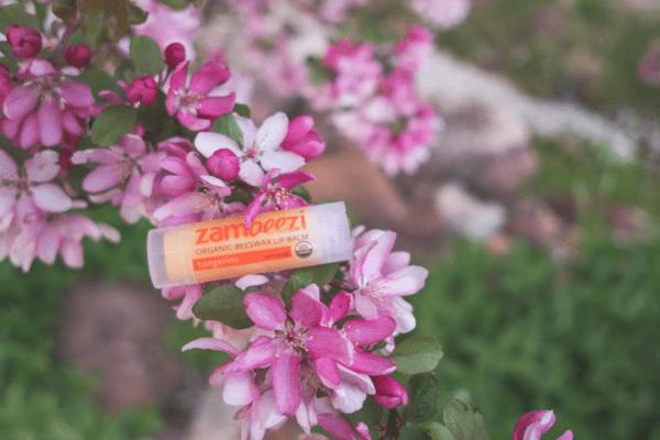 Fair Trade organic tangerine lip balm by Zambeezi (all natural) on Rosette Fair Trade