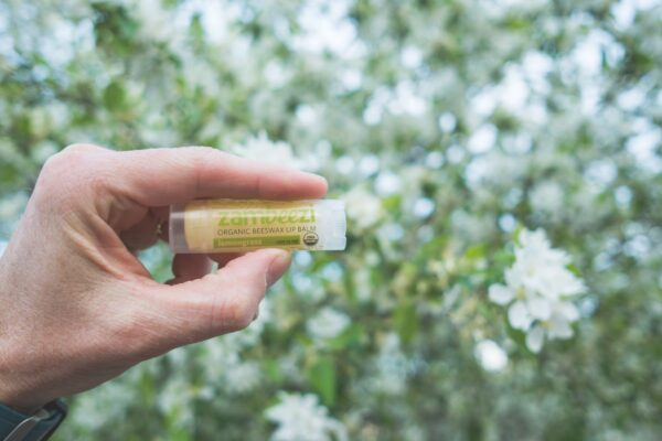 Organic lemongrass lip balm by Zambeezi (fair trade, natural) on the Rosette Network