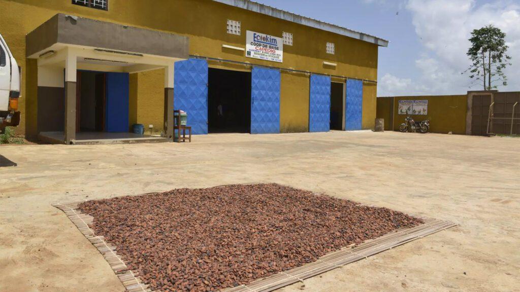 8th fair trade principle (capacity building) on the Rosette Network blog